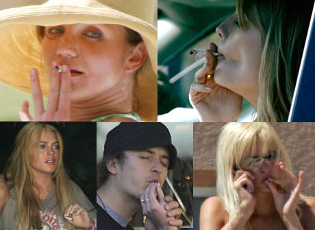 Famous Celebrities Who Smoke Weed | Potent